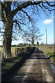 SO3959 : Country road near Twyford by Philip Halling