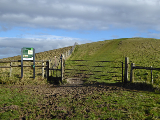 Downland gate and stile