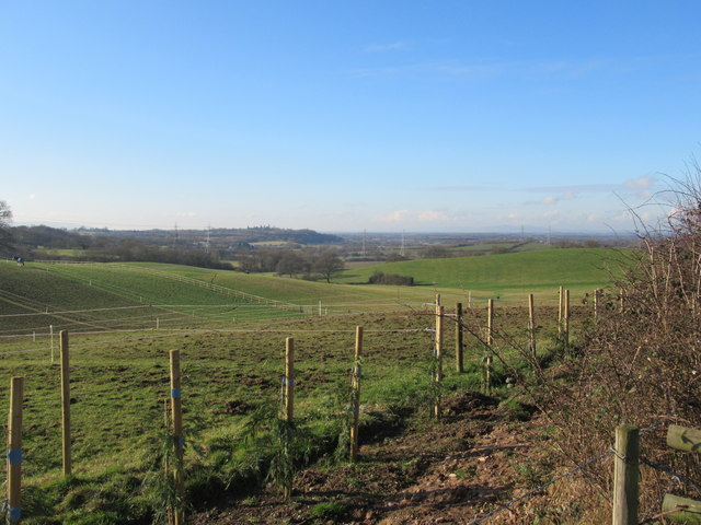View From Monarch's Way Near Doebank House