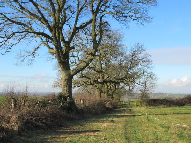 Monarch's Way Heading Towards Astwood Farm