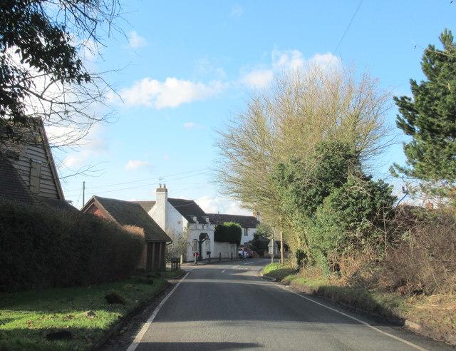 Callow Hill Lane Near Love Lyne