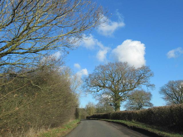 Norgrove Lane Near Norgrove Court (2)