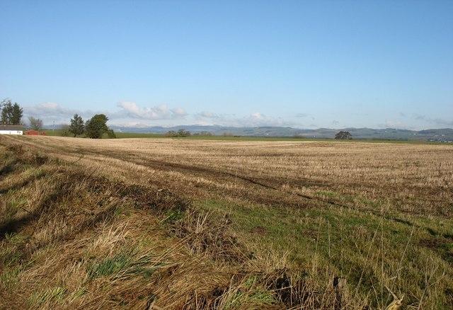 Fields at Bailie Knowe
