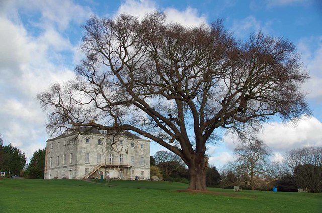 Major Oak & Beckenham Place