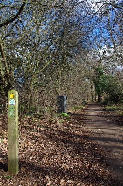 Green Chain Walk and Capital Ring