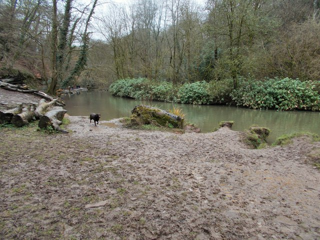 Frome Valley Walkway