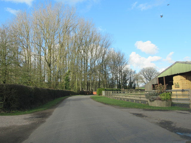 Cur Lane Near Bartles Wood