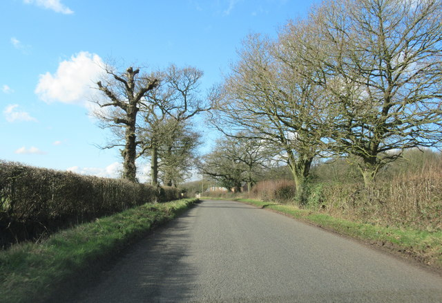Cur Lane Approaching Cocksian Cottage
