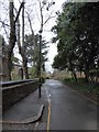 TQ2569 : Lamppost in Church Path by Basher Eyre