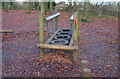 TQ1452 : Play Area at Polesden Lacey by Des Blenkinsopp