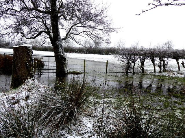 Wintry at Creevenagh