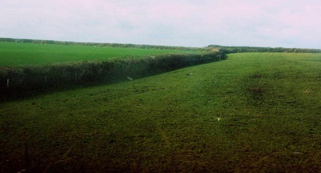 Field and parish boundaries near Higher Hendra