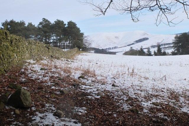 Field above Barony Castle