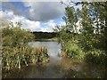SJ7948 : Bateswood Lake by Jonathan Hutchins