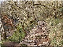 SN9211 : Riverside path by the Afon Mellte by Rudi Winter