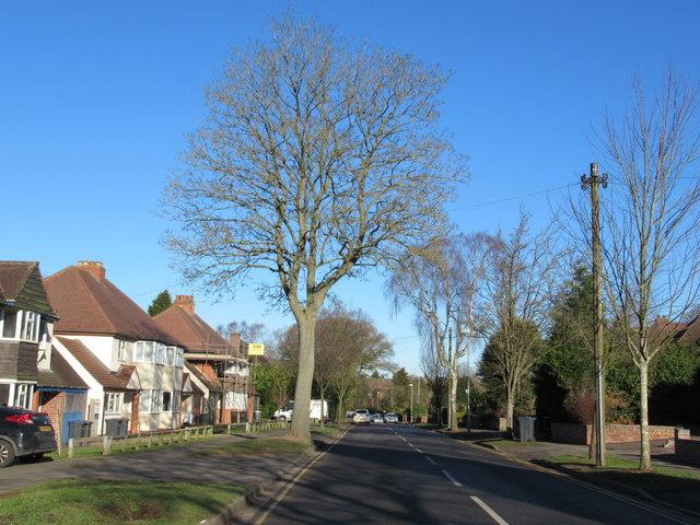 Bedford Road Sutton Coldfield