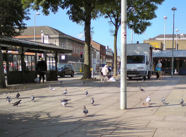 Pigeons on Hyde Civic Square