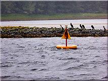 G9074 : Donegal Bay, Shingle Bank near Bell's Isle by David Dixon