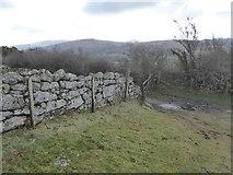 SX7381 : Wall on Easdon Tor by David Smith
