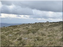 SX7282 : The north-west slope of Easdon Tor by David Smith