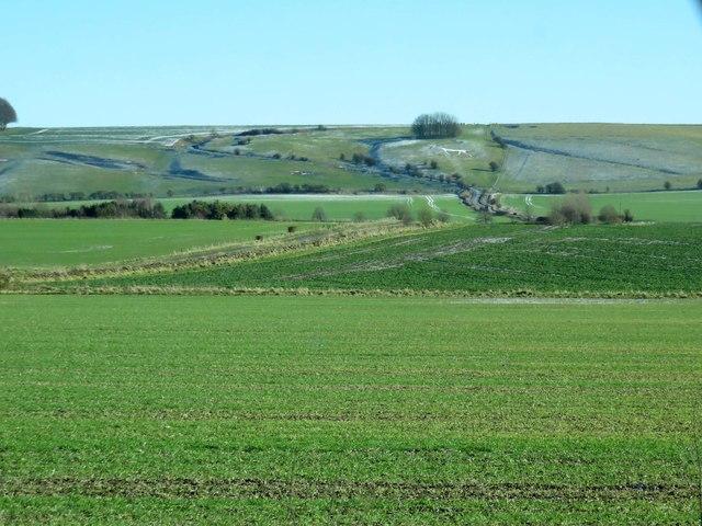 Arable field by Fiddler's Hill