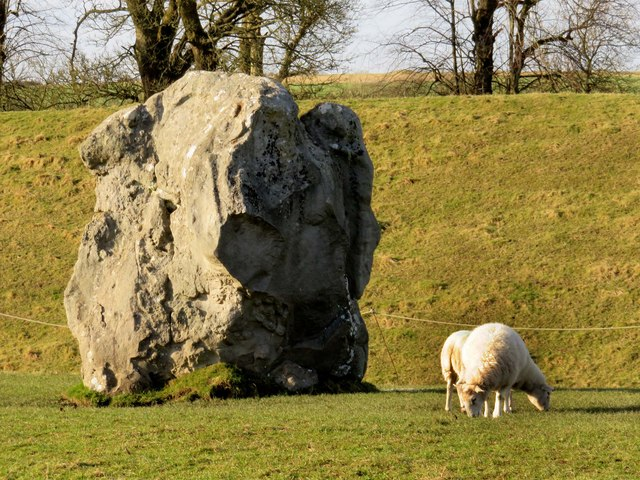 Sheep grazing by a standing stone