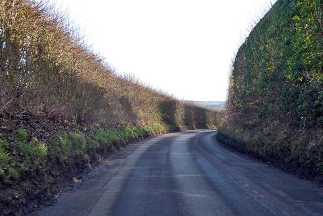 Shalmsford Road