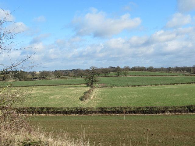 Field off M5 From Footbridge