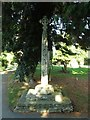 SP8864 : Churchyard Cross by Jeff Tomlinson