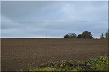 TL5049 : Ploughed field by N Chadwick