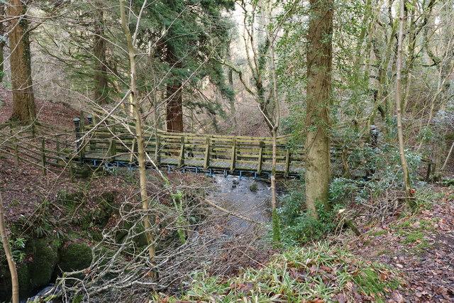 Swing Bridge, Glenapp Wood