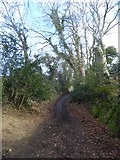 SX7383 : Path from Bovey Bridge to North Bovey church by David Smith