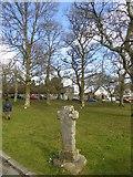 SX7383 : North Bovey village cross by David Smith