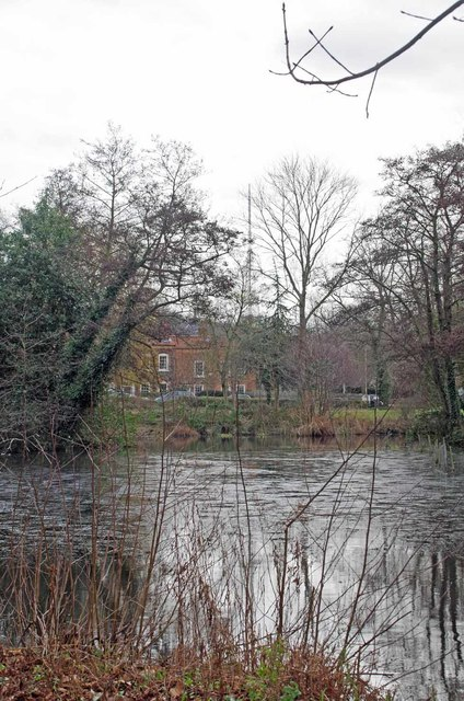 The Mill Pond Dulwich