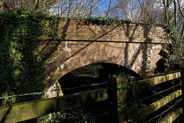 A hidden bridge which carried the Devon and Somerset Railway