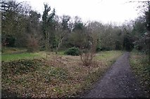 TQ3472 : Clearing in Sydenham Hill Wood by Glyn Baker