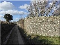 SX7583 : Walls of yard at Barnecourt by David Smith