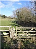 SX7583 : Stone gatepost and wooden gate, by path to Foxworthy by David Smith