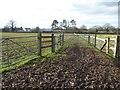 SO8249 : Farmland at Kent's Green by Philip Halling