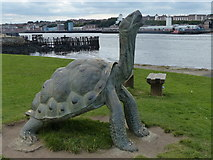 NZ3668 : Tortoise sculpture near the Little Haven Hotel by Mat Fascione