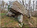 NH8149 : Glacial erratic? by valenta