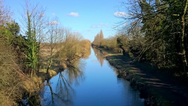 The Slough Arm