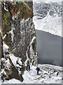 S3210 : Icicles Hang by the Wall by kevin higgins