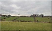 J2333 : Homesteads on the Ballynagappoge Road by Eric Jones