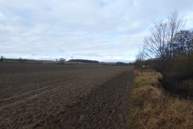 Field beside the Laver