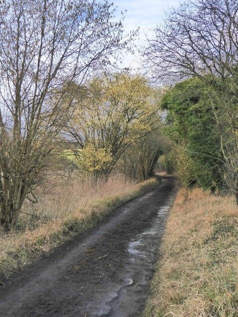 Ebbisham Lane, heading north