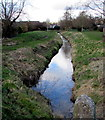ST4287 : Mill Reen between Magor and Undy, Monmouthshire by Jaggery