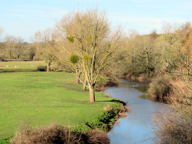 The River Salwarpe From Hawford Bridge