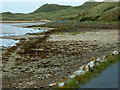 C4351 : Trawbreaga Bay, Shore near Ballycramsy by David Dixon