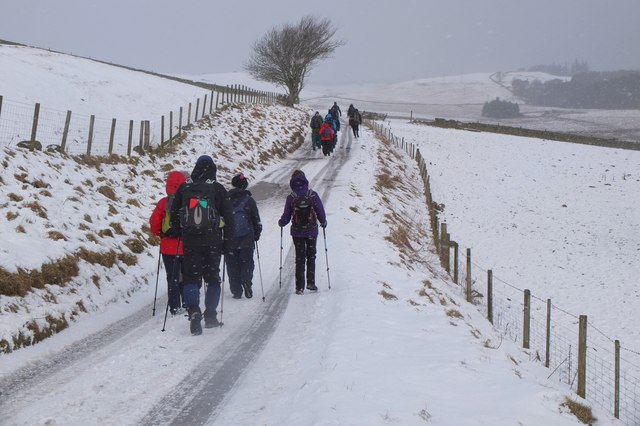 Road from Upper Kidston